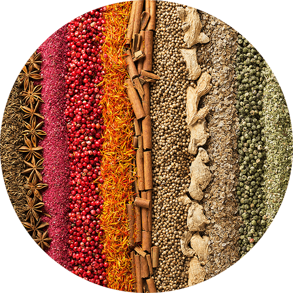 rows of various spices