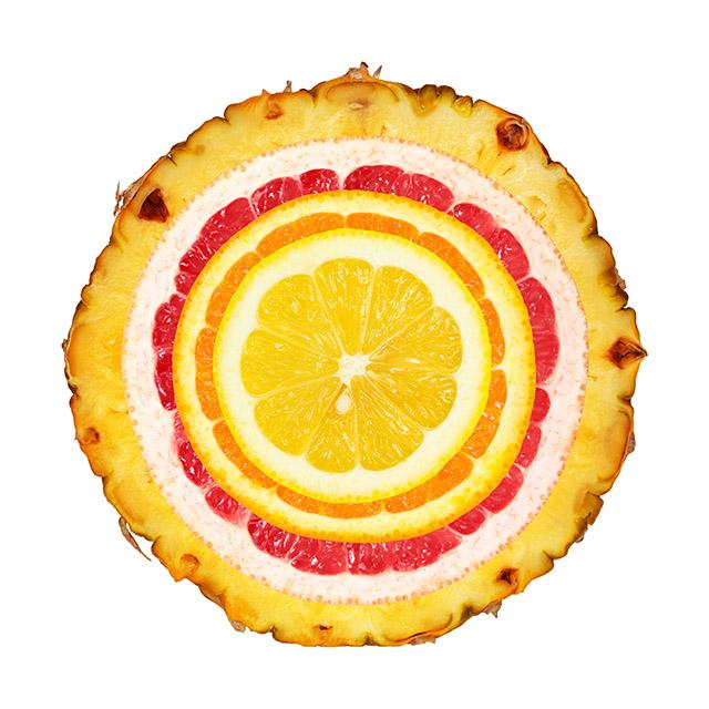 concentric fruit circles